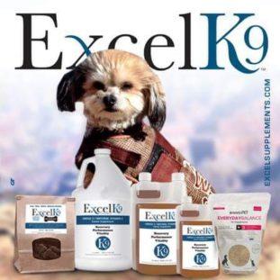 ExcelK9
