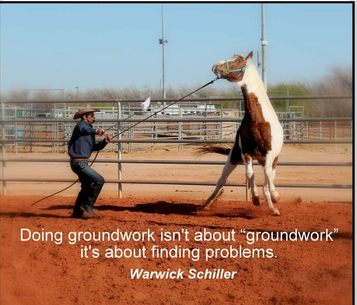 Warwick Schiller